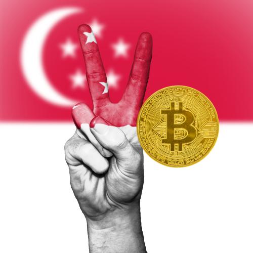 bitcoin crește prețul 2021 google trends bitcoin